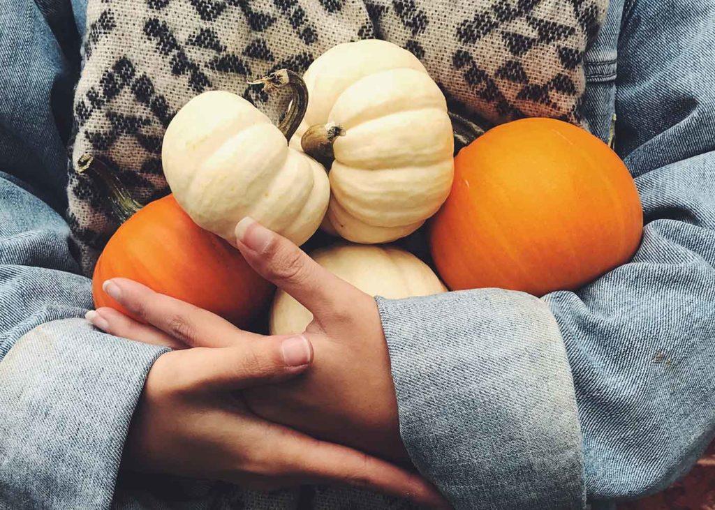 weiß und orangen Farbene Hokaidokürbisse werden gehalten